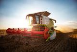 Combine harvesting wheat - 128076521