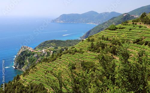 Paysage de la côte Ligure
