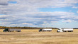 Three semi trucks with attached grain trailers parked in a harvested field in a cloudy autumn landscape