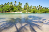 Palm trees cast shadows on wide remote tropical Brazilian island beach in Bahia Nordeste Brazil