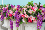 colorful of rose in flowerpot pastel wall background