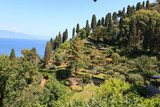 Liguria coast with terraces and Mediterranean Sea near Portofino, Italy