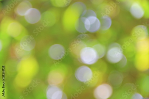 Bokeh natural color background, colorful  leaf of the tree  Poster