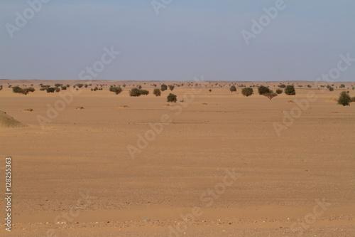 Tuinposter Algerije Die Wüste Sahara im Sudan in Afrika