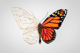 Abstract Wired Low Poly Butterfly. 3d Rendering