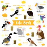 Cute Birds Animal cartoon on white background with animal name. Eagle. Vulture. Sparrow. Seagull. Puffin. Quail. Hummingbird. Albatross. Xantus. Yellow-Billed Hornbill. Vector illustration. Set 3.