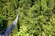 A front shot of the Capilano Suspension Bridge in Vancouver, Canada