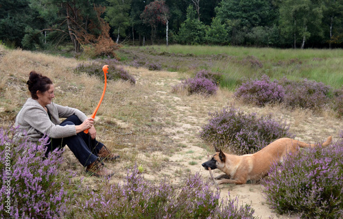 Poster Woman and Belgian Malinois dog playing in the heath