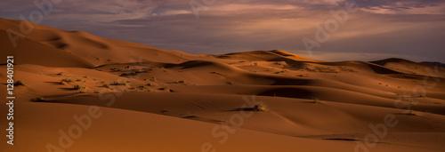 Poster la inmensidad del desierto