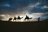 Silhouette of camel caravan on sand dune with unset