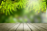 Wooden empty and blur bamboo forest background.