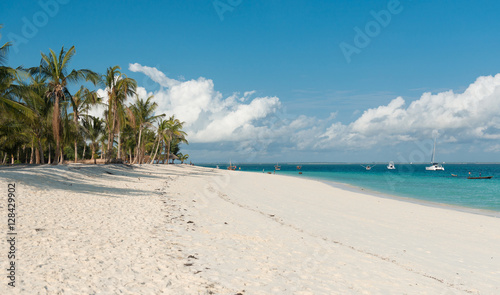 Foto op Plexiglas Zanzibar amazing african beach with palms and horizon on the background