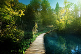 way in forest, Croatia, Plitvece