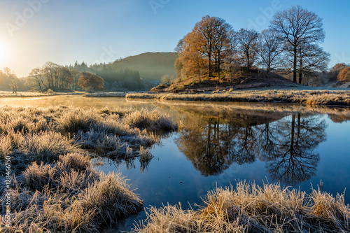 Fotografiet Glowing golden light shining on Autumnal frosty scene at the River Brathay, Lake District, UK