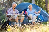 Senior couple relaxing beside their tent