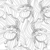Vector seamless pattern with outline Cypripedium calceolus or Lady's-slipper orchid and leaves on the white background. Elegance floral background in contour style for summer design and coloring book.