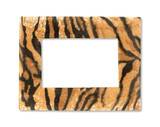 Wildlife fur tiger photo frame isolated on white - 128566154