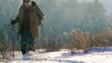 Tourist with beard holding trekking poles and wading through deep snow during hike in winter