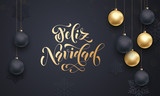 Spanish Merry Christmas Feliz Navidad golden decoration calligraphy lettering