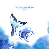 Vector watercolor whale