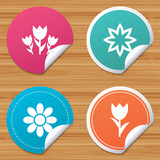 Round stickers or website banners. Flowers icons. Bouquet of roses symbol. Flower with petals and leaves. Circle badges with bended corner. Vector