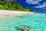 Tropical beach with palm trees on west side of Rarotonga, Cook I