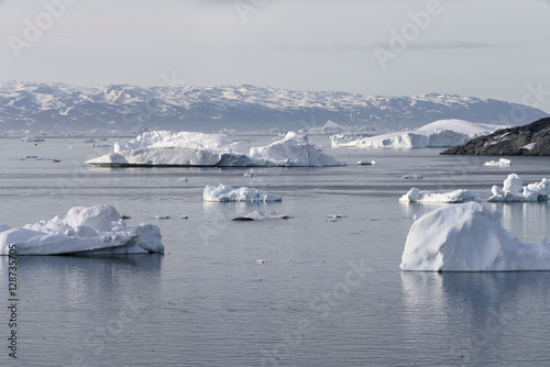 Staande foto Antarctica beautiful icebergs on the arctic ocean in Greenland