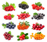 Collage of wild berry isolated - 128749563