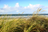 Küstenlandschaft auf Insel Amrum an der Nordsee