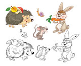 Coloring page with cute and funny woodland animals
