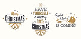 Merry christmas set of gold lettering, with caligraphic letters, text and decoration, collection of christmas vector illustration for postcard, banner and wish card - 128874564