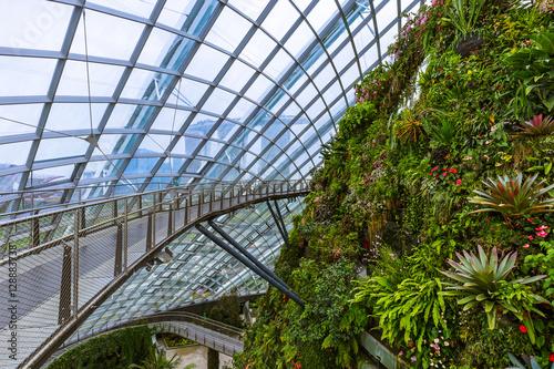 Cloud Forest Dome at Gardens by the Bay in Singapore Poster