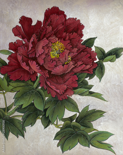 red peony on a silver background - 128900938