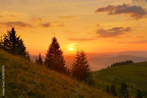Valokuva Highland