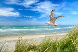 Strand am Meer - 128965579
