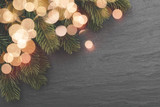 Christmas fir branches and lights