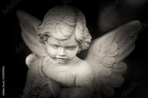 guardian angel - black and white photo - 129019156