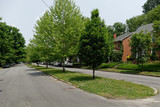 Residential neighborhood homes, median strip, trees, and street. Focus on median strip with trees. - 129030708
