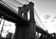 Brooklyn bridge in black and white style