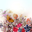 Vector natural field background or illustration with wild flower