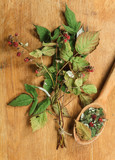 Raspberry. Dried herbs. Herbal medicine, phytotherapy medicinal