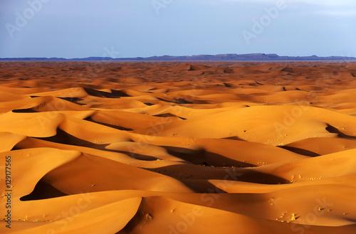 Staande foto Marokko Sand dunes in Sahara Desert, Africa