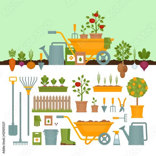 Foto op Aluminium Boerderij Vegetable garden. Garden tools. Banner with vegetable garden. Flat style, vector illustration.