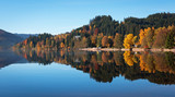Autumn forest reflected in the surface of the lake Titisee, Germ