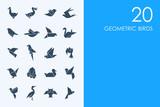 Set of geometric birds icons