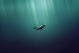 Taucher im Meer - 129346579