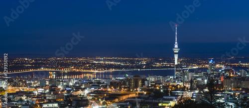 Fototapeta Blue Hour from Mount Eden