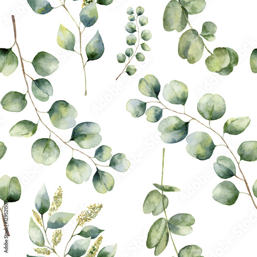 Watercolor floral pattern with eucalyptus leaves. Hand painted pattern with branches and leaves of silver dollar, baby and seeded eucalyptus isolated on white background. For design or background - 129521507