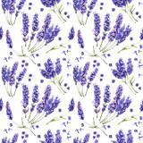 Wildflower lavender flower pattern in a watercolor style isolated.
