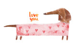Dachshund in suit with hearts. Hand drawing illustration